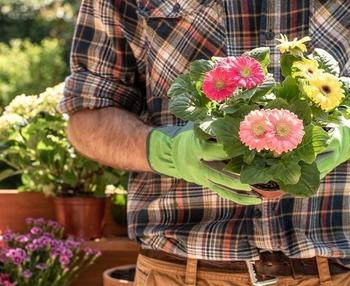 Beneficios de la jardinería para personas mayores