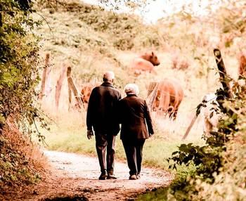Claves para el envejecimiento activo