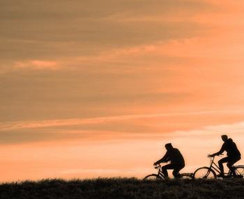 ¿Cuál es la actividad física recomendada para adultos?